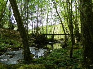 pont-du-roi-1